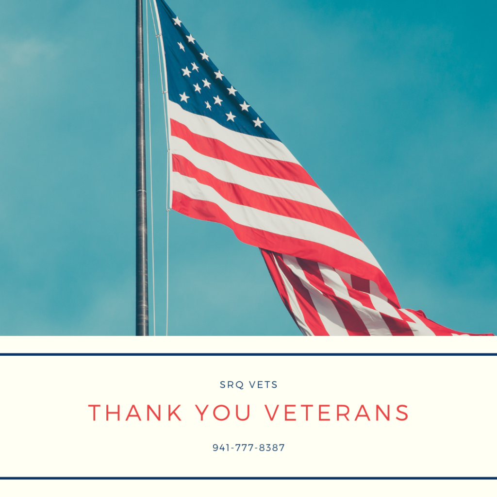 sarasota veteran support